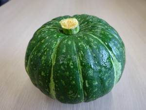 鈴かぼちゃ1
